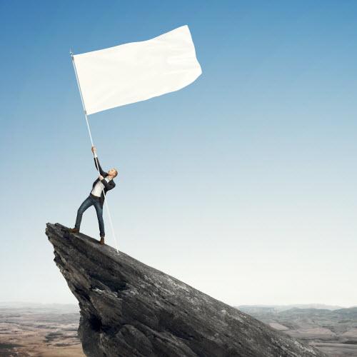 Qlik leadership – vision, guts and glory… hopefully