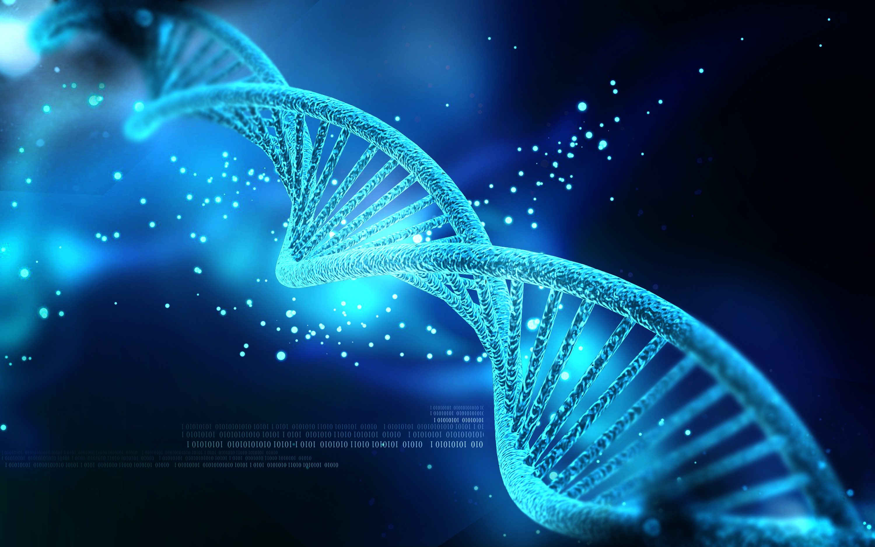 Thoughts on DNA and Big Data