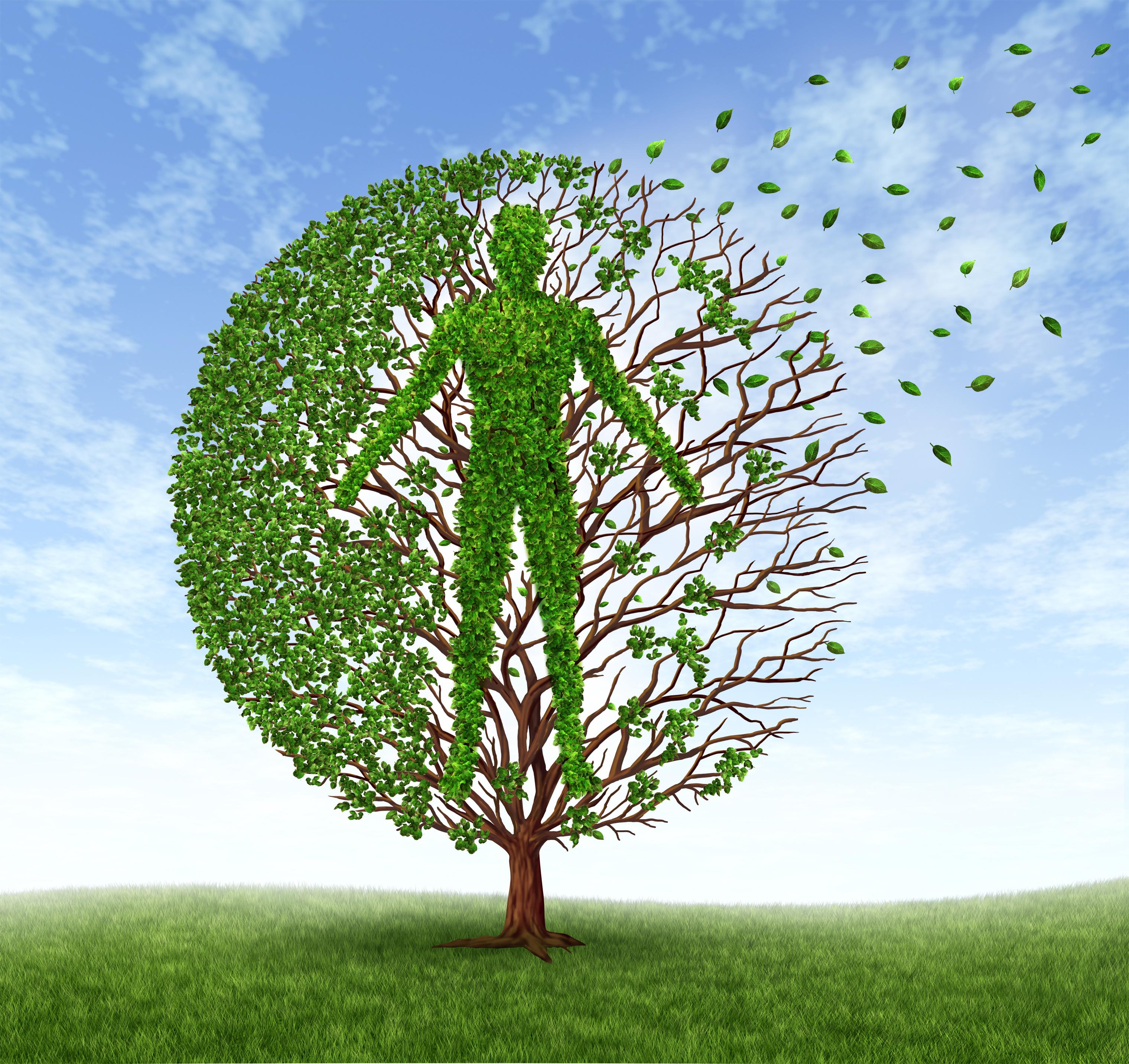 PopHealth-Tree