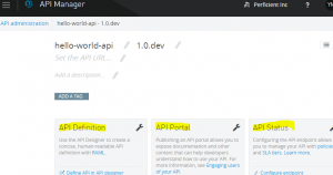 API Manager Console