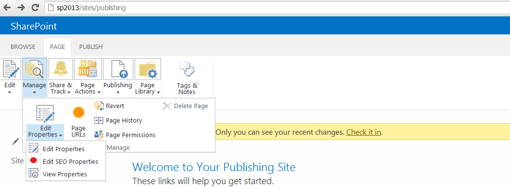 Search Engine Optimization for SharePoint 2013 Sites (Part I)